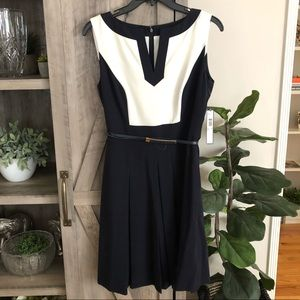 Tahari Color-block Sleeveless Spring Dress w/ Belt